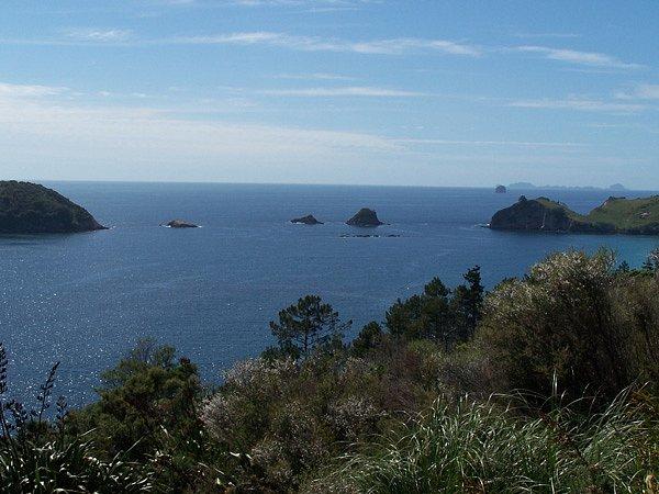 New Zealand tour 2008